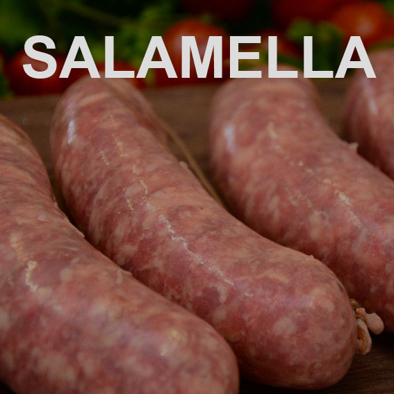 SALAMELLA